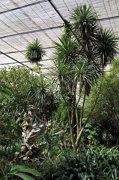 espace botanique
